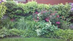 GardenLiving4.jpg